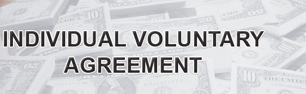 Individual Voluntary Agreement